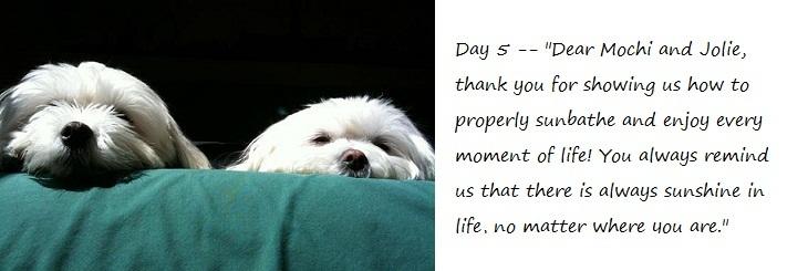 Day5_blog.jpg