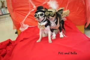 Halloween contest_Peti and Bella.jpg