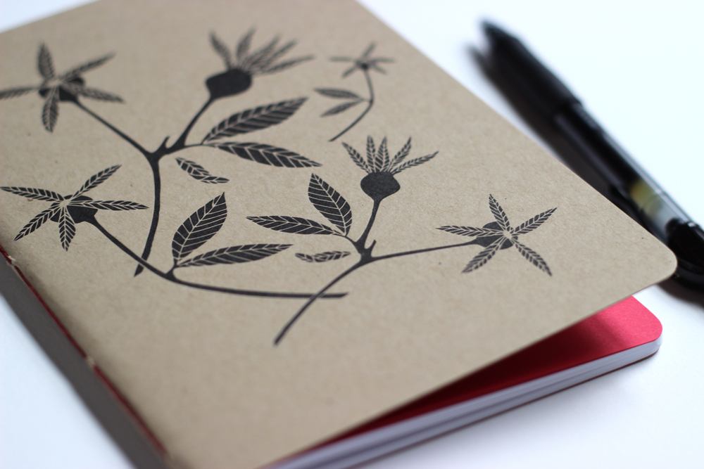 rosehips_notebook