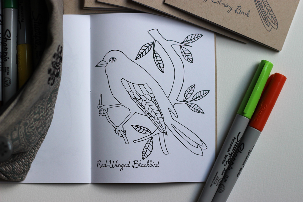 bird-coloring-book