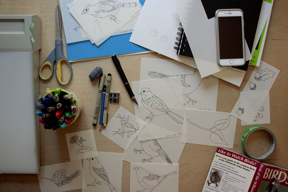 More sketches and mockups for backyard bird coloring book