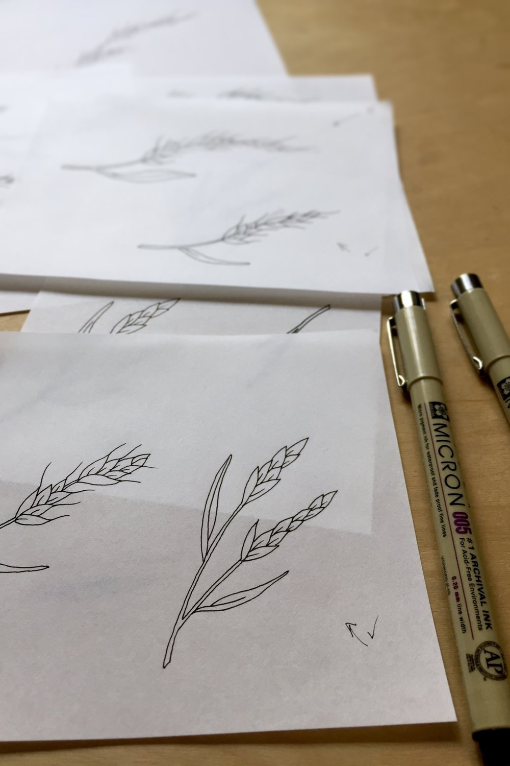 BlueBunch Wheatgrass test sketches for logo design and illustration - Tiger Food Press