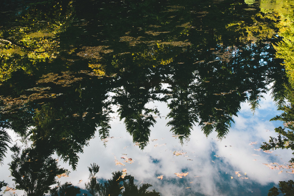 nitobe memorial garden reflection vancouver engagement photographer ubc