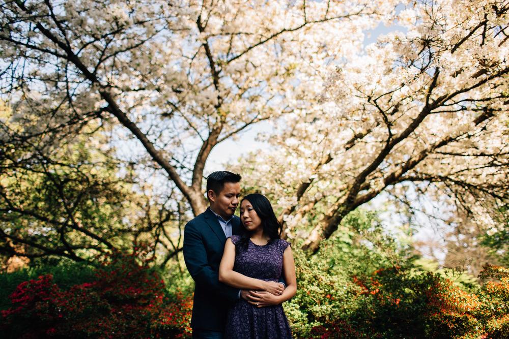 cherry blossom engagement photography vancouver bc vandusen botanical garden