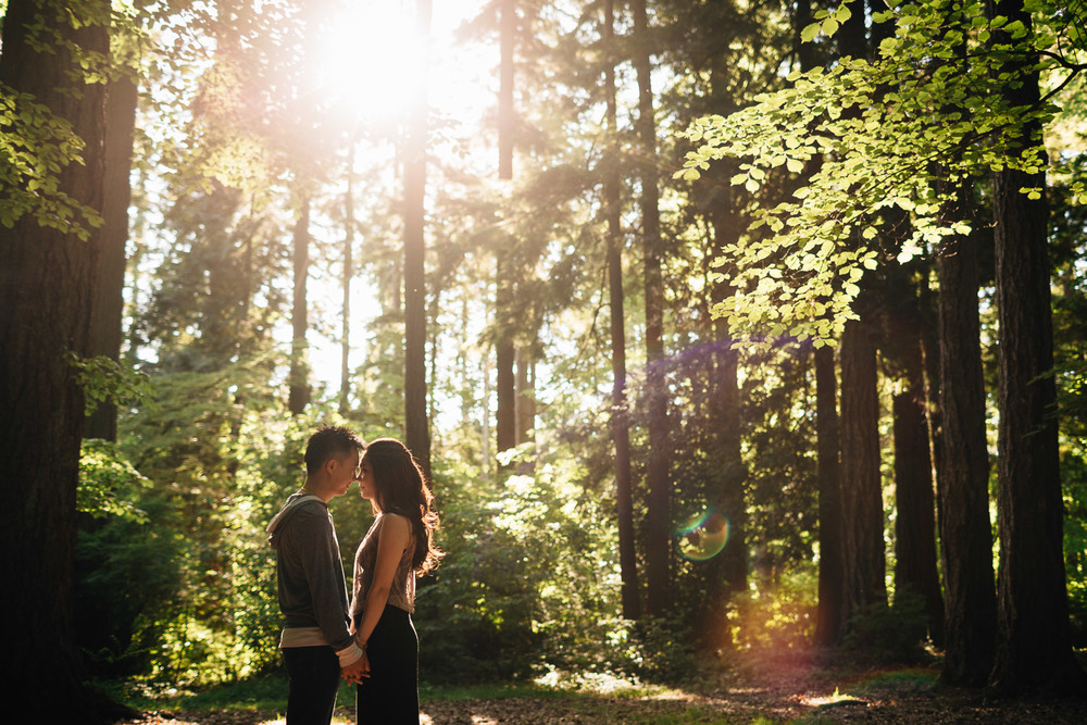 engagement photography sunset forest stanley park