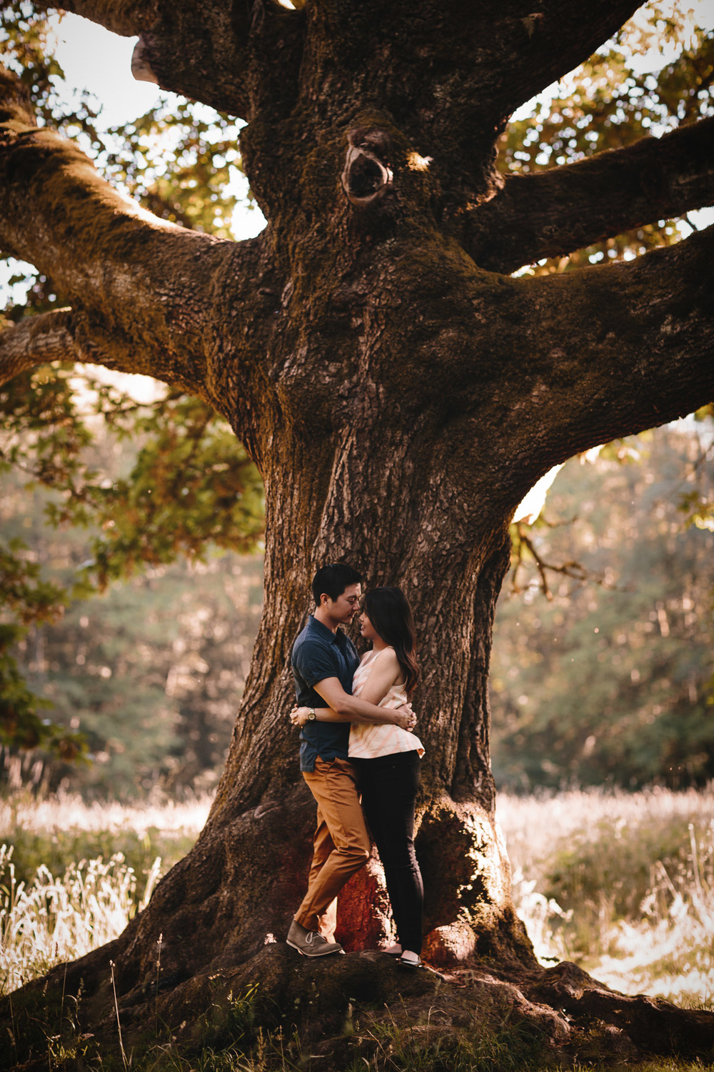 redwood park surrey engagement photography
