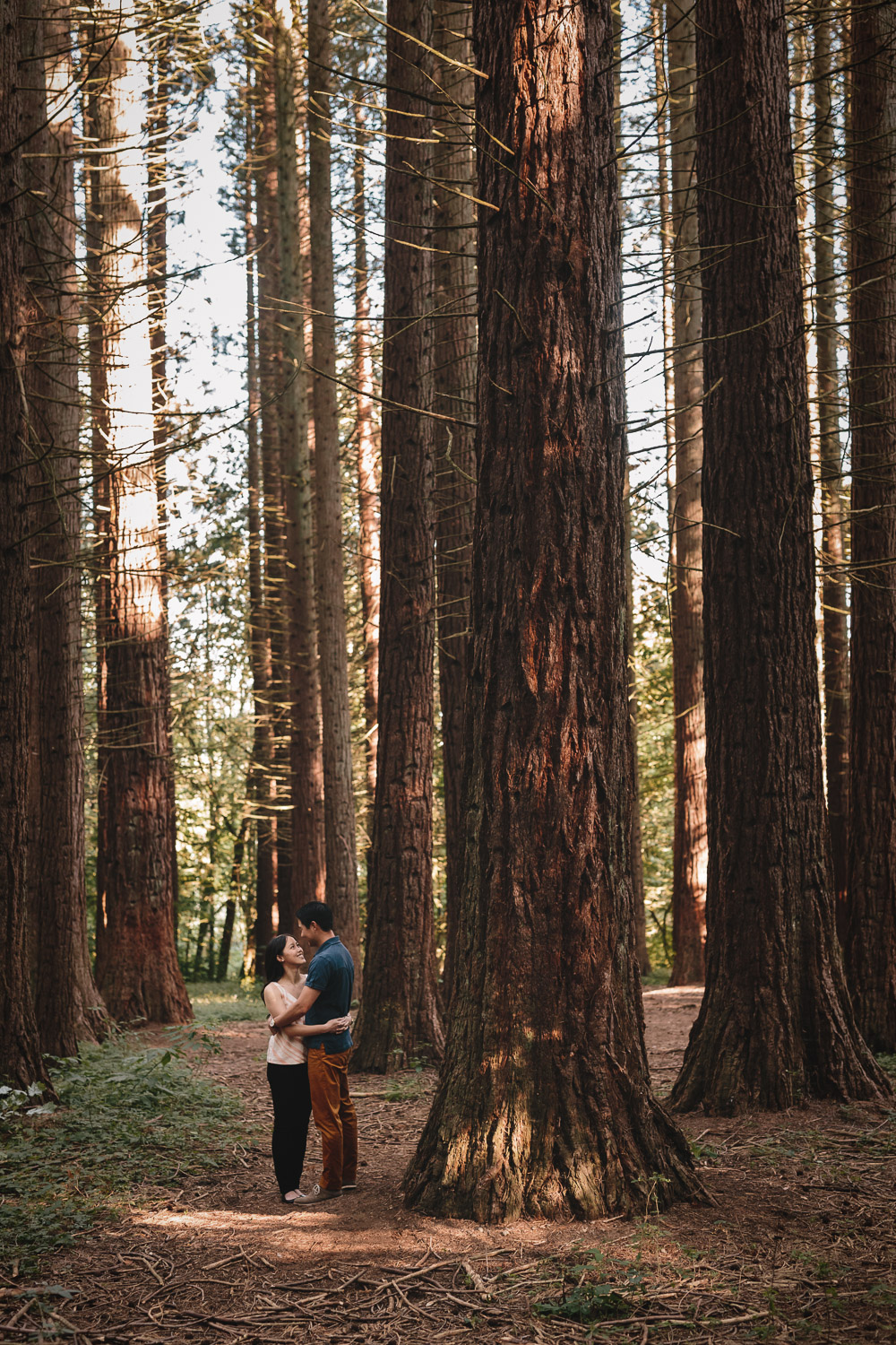 redwood park engagement photos surrey