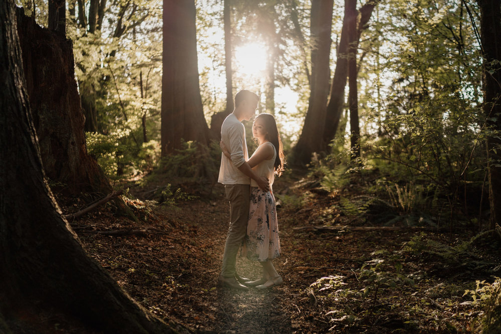 stanley park forest engagement photography in vancouver bc
