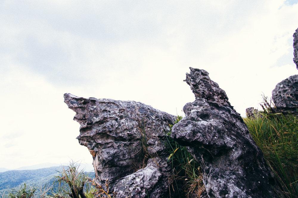 2009-12-28 Gran Sabana24_LeonardoBracho.jpg