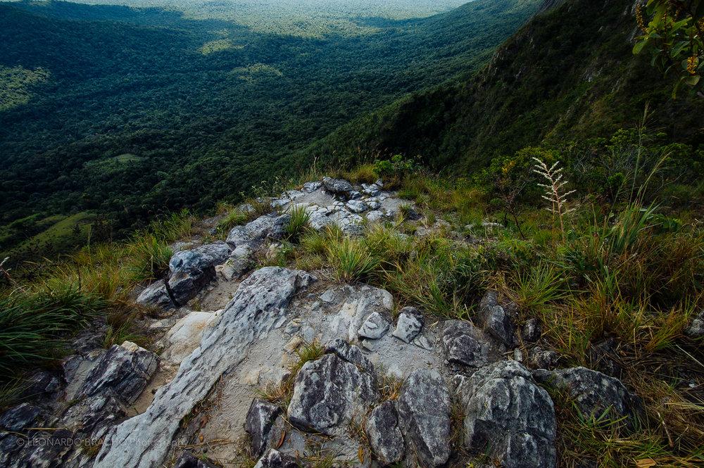 2009-12-28 Gran Sabana29_LeonardoBracho.jpg
