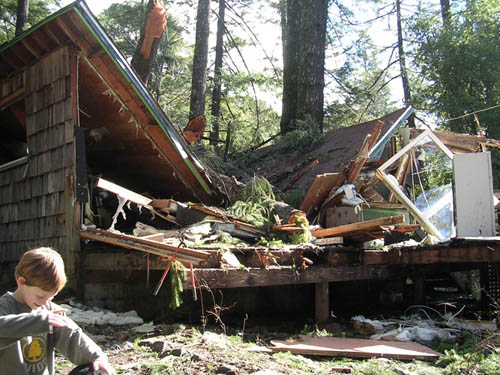 The house after the trees fell on it