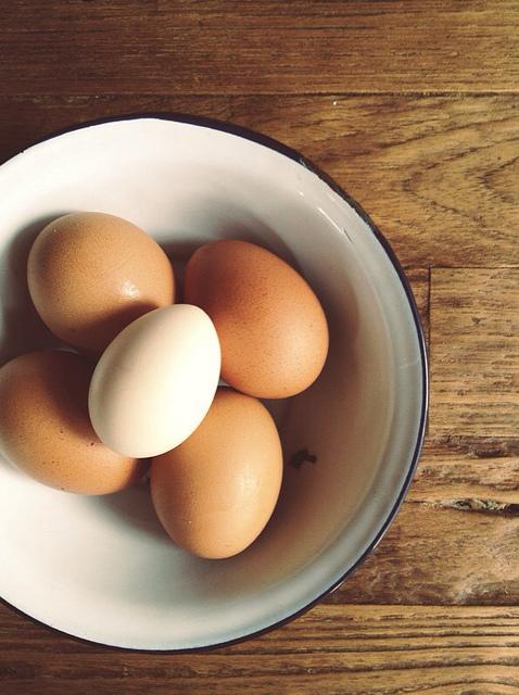 One white egg.jpg