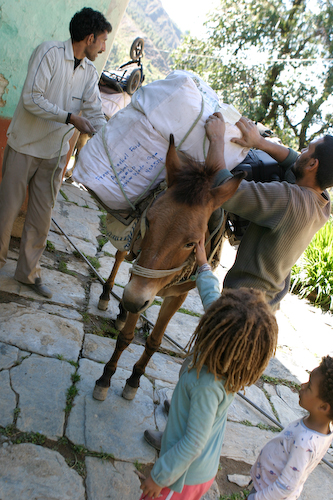 34 Moving house with pack donkeys.jpg