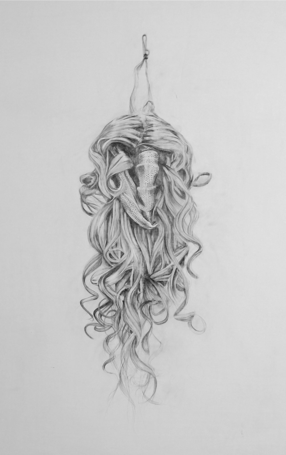 Detail of 'Hanging Wig'