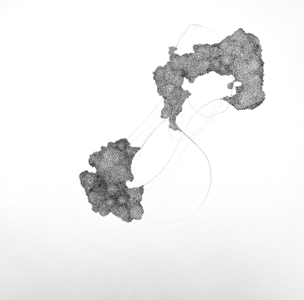 'spawn II', ink on paper, 30 x 30 cm