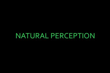 Group Show, 'Natural Perception'April 2013