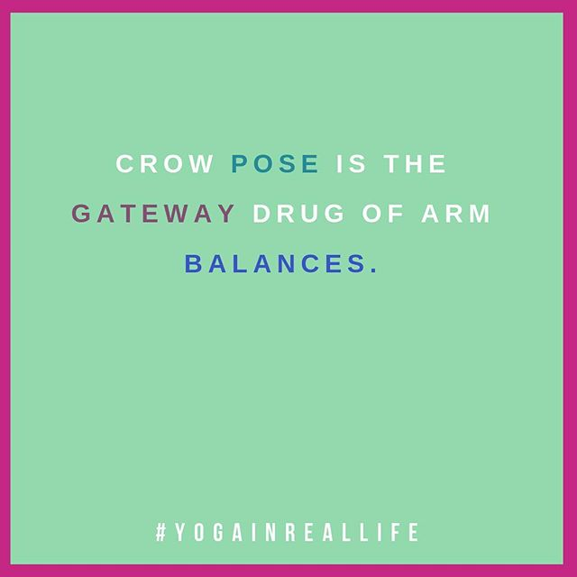 Sure, the first crow pose was great but what's next? Side crow? Peacock? #chasingthehigh #gatewaydrug #gatewaypose