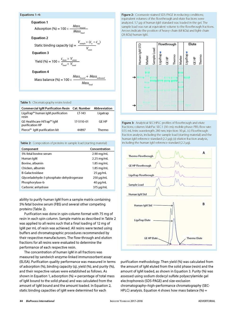 IgM Whitepaper_Page_2.jpg