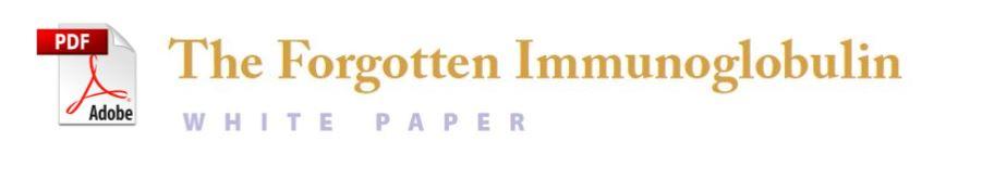 IGM Whitepaper Image.jpg