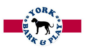 York Bark & Play