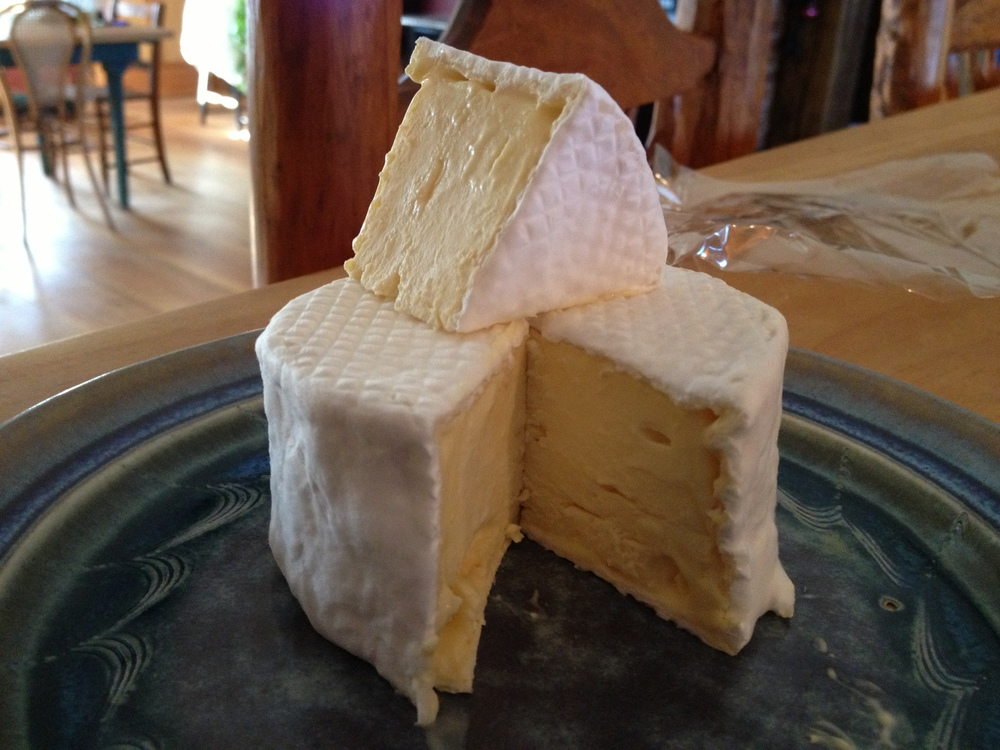 Camembert in Maine