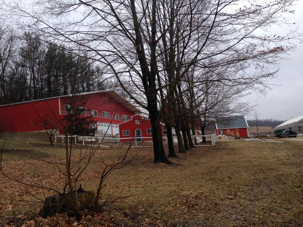 Primrose Valley Farm