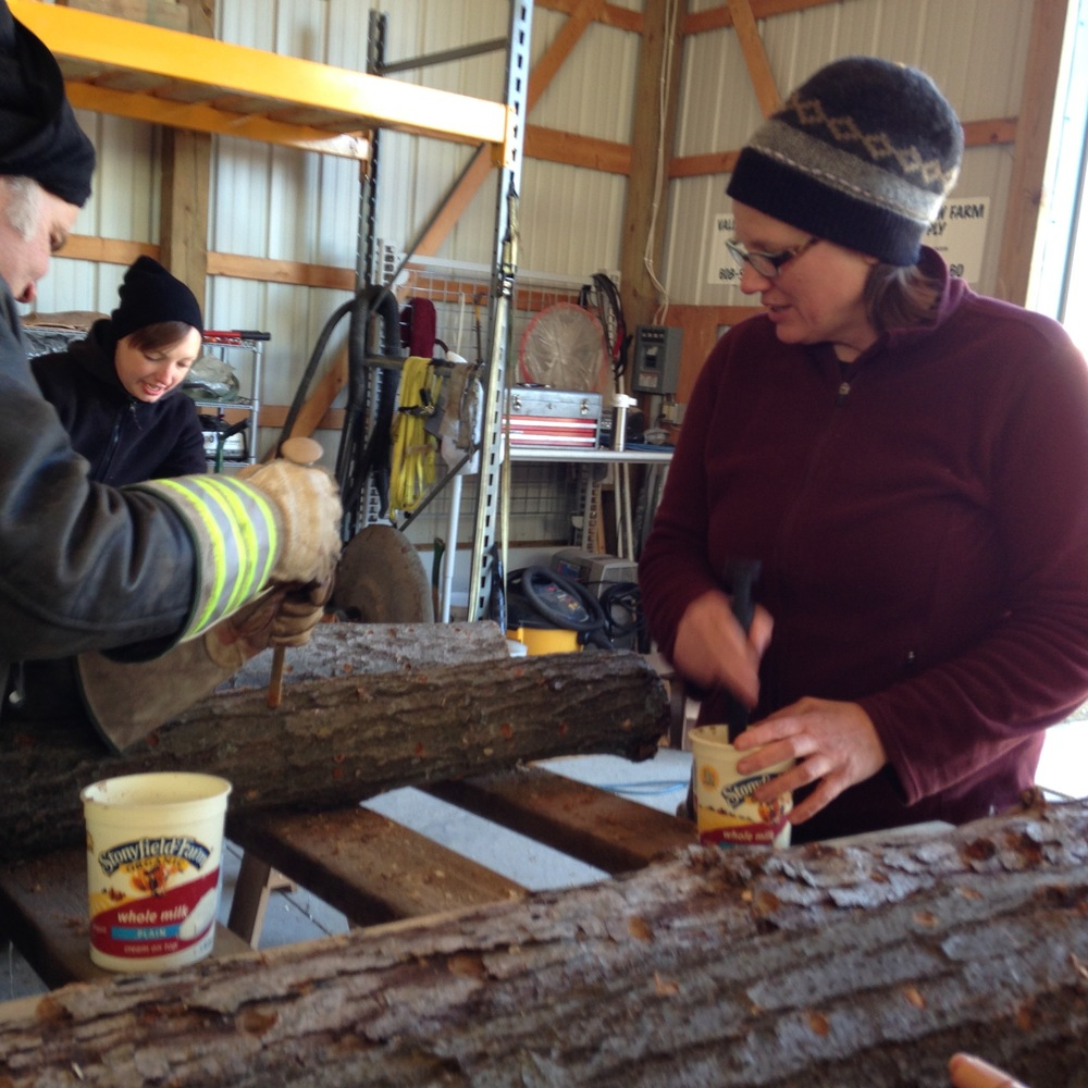 Eric and Leah take a turn on the assembly line using specialized wands to poke sawdust spawn into the pre-drilled holes