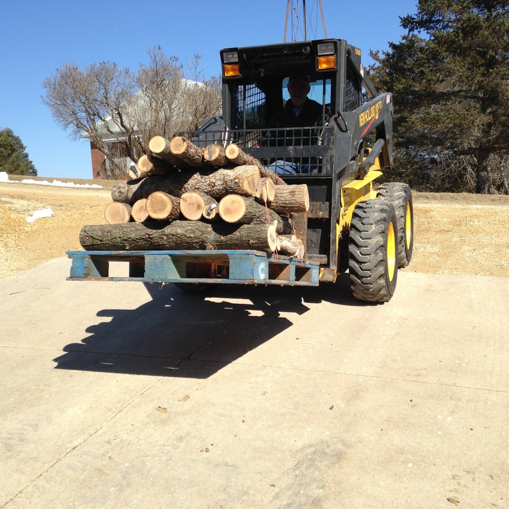 We stacked the logs sorted by variety on pallets for ease of transport.