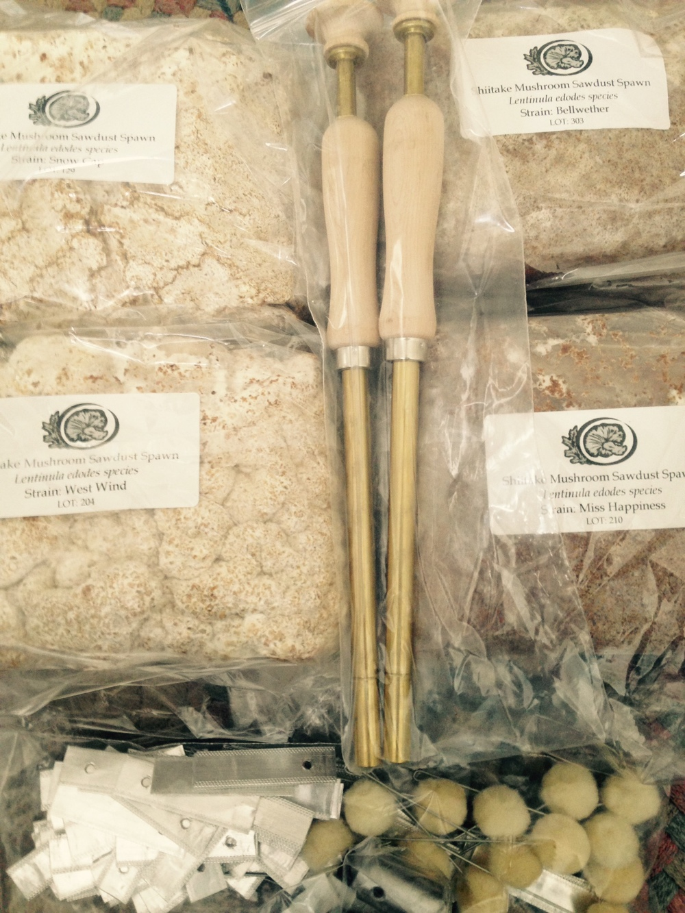 The supplies arrived in the mail a few days before - including sawdust spawn for four different varieties of shiitake mushrooms.