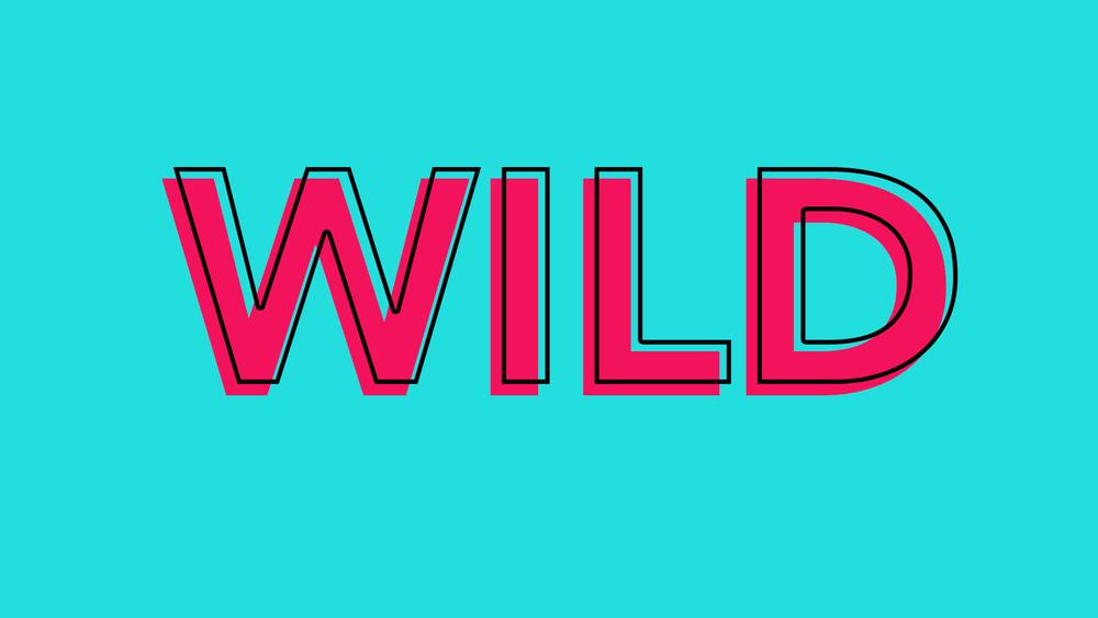 wild 14.jpg