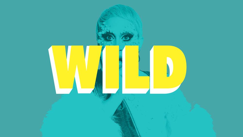 wild 3.jpg