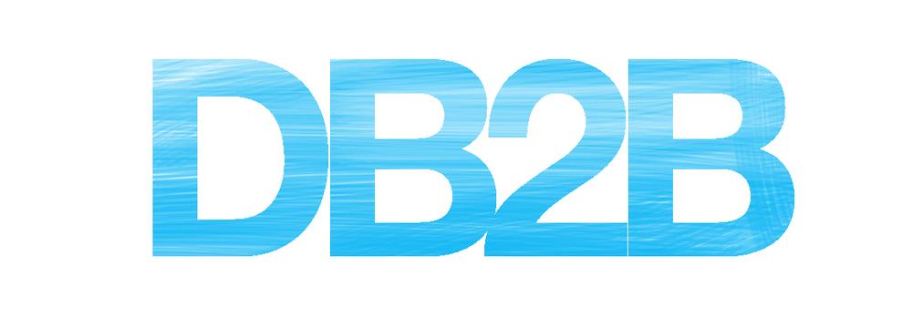 Happy Branding Company_blogi_DB2B.jpg
