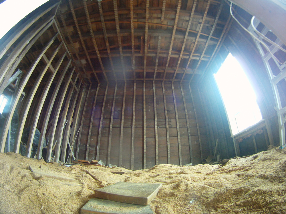 Raining sawdust!