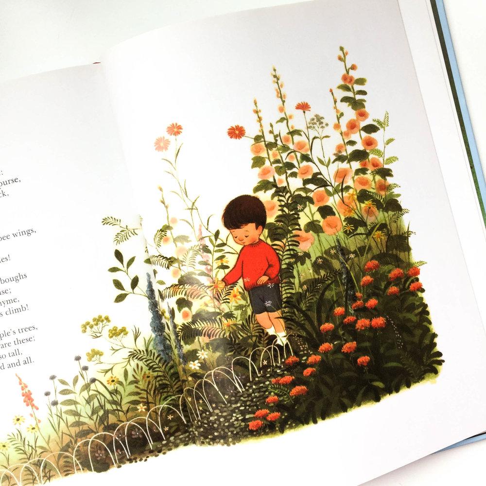 botanicals-22.jpg