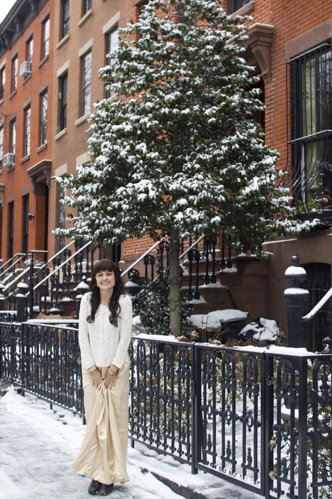 Snow_Brooklyn_012212.jpg