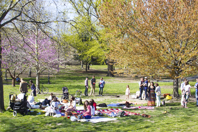 Brooklyn Park 042412.jpg