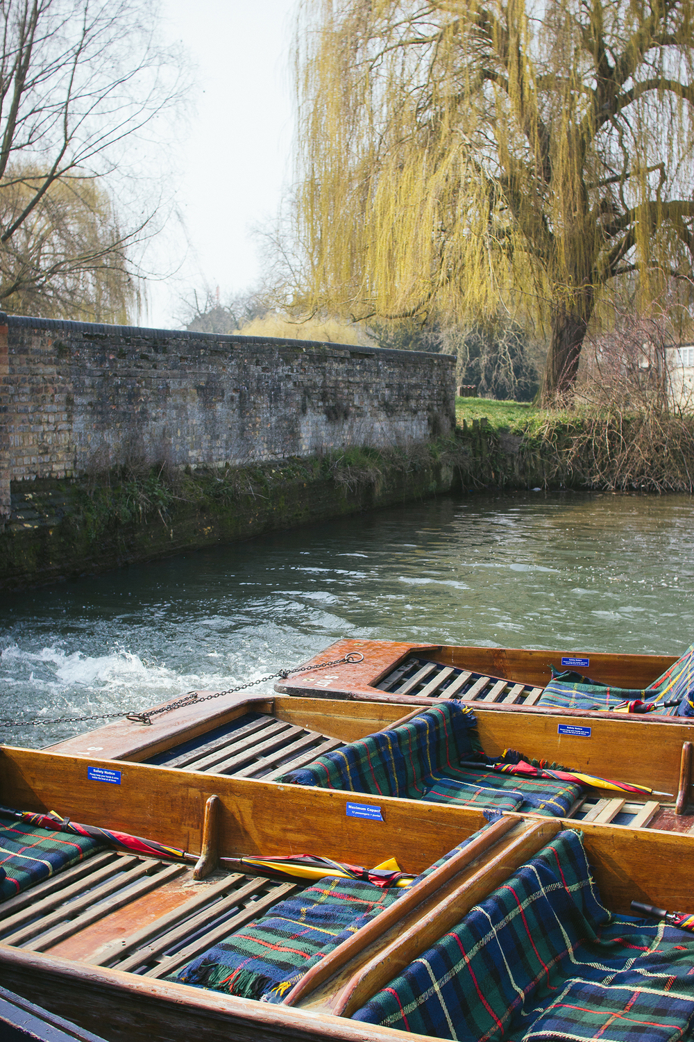 01-punting-in-cambridge-102013.jpg
