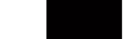 DSS-Logo-Shorter-Nov2013.jpg