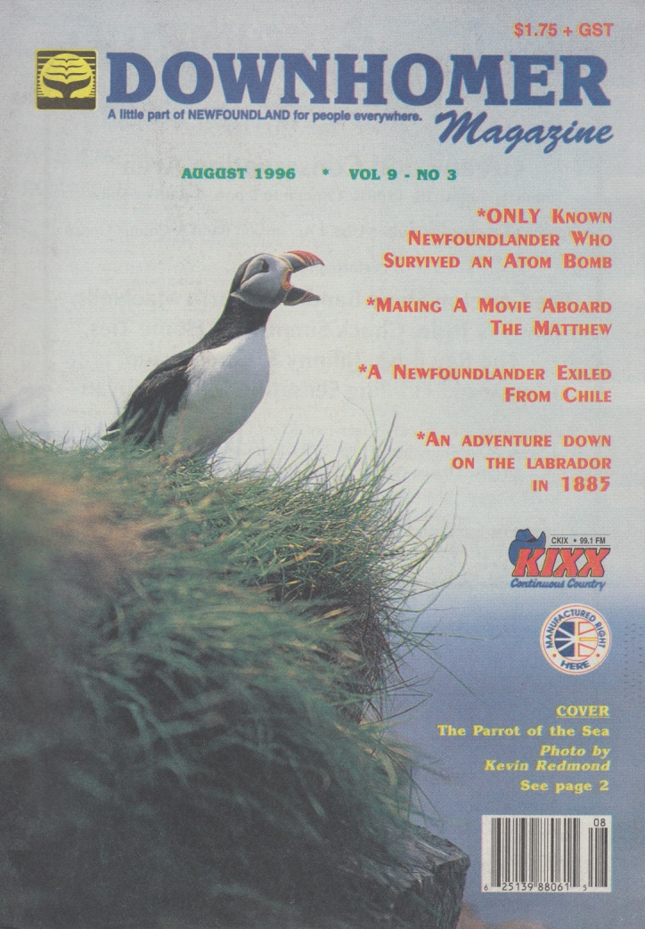 1996 cvr DH v9 n3.jpg