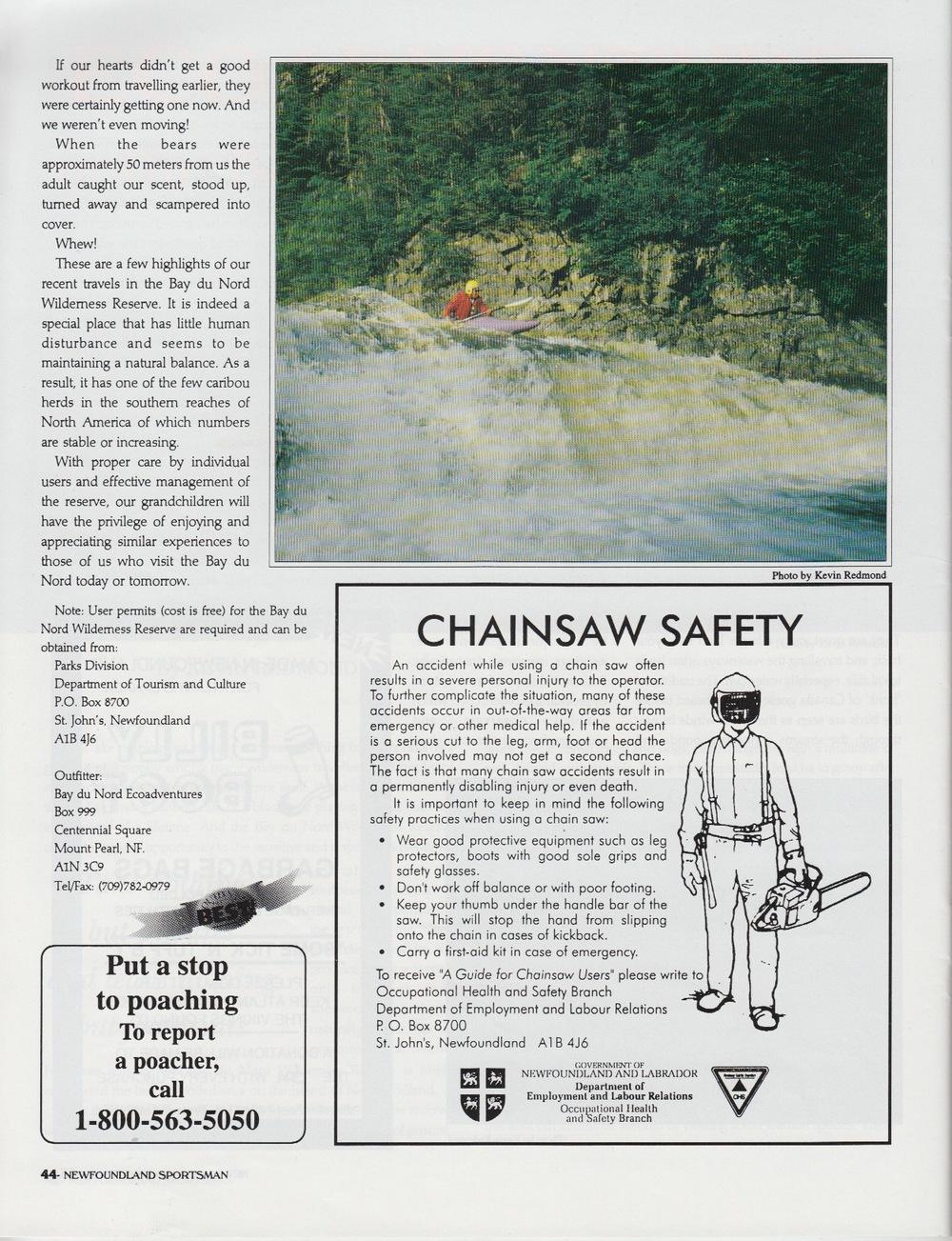 1995 art ns BDN v5 n6_Page_3.jpg