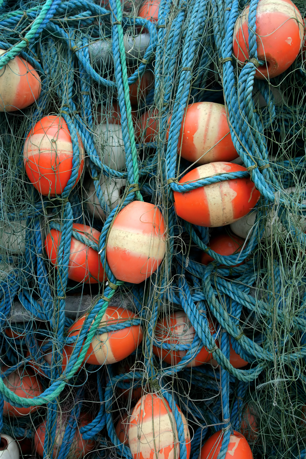 Fishing Rope and Buoys