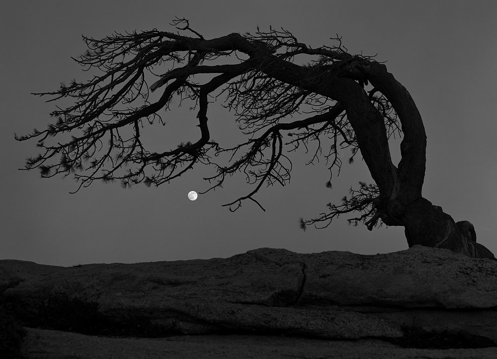 Charles Cramer: Moon. Sentinel Dome
