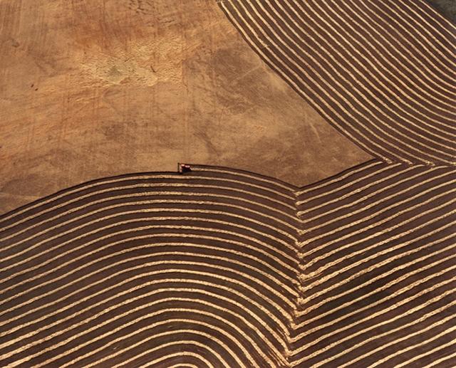 John Griebsch: Wheatfields & Tractor