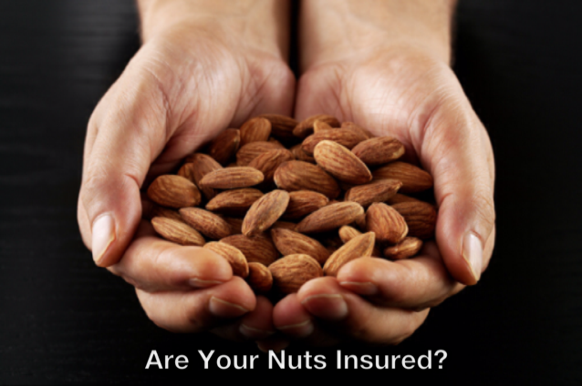 Are your nuts insured.png