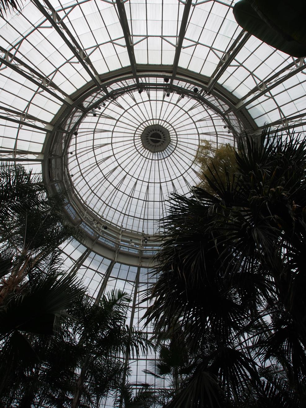 Botanical NY_04.jpg