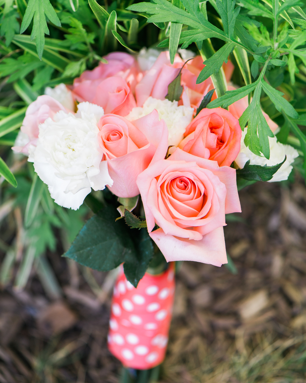 MarkHeather-Occoquan-Virginia-Wedding-4.jpg
