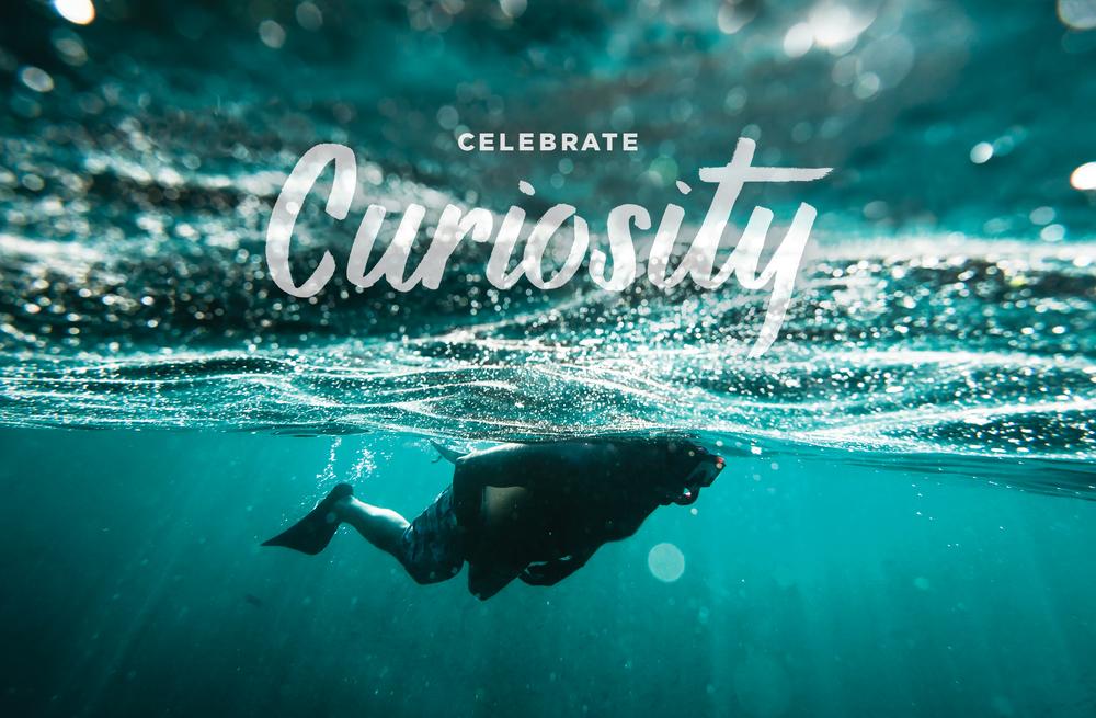 Carando_Curiosity