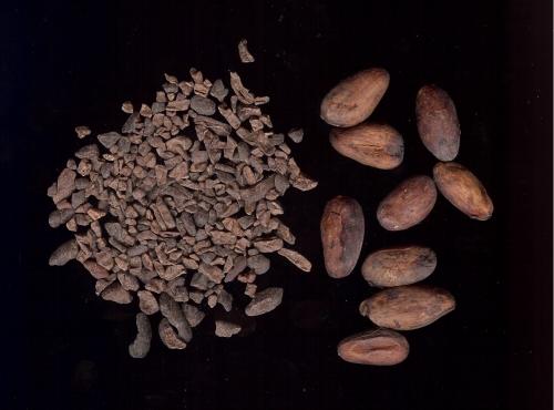 cacao-nibs-beans.jpg