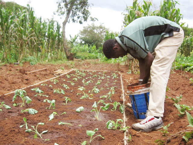 G.O.D. East African cooperative, Rueben Ndwiga, of Kenya, plants crops at the bio-intensive growing workshop.  While Rueben has been a farmer his entire life, the methods and techniques introduced to him at this conference enhanced his ability to produce nutritious food for his family.