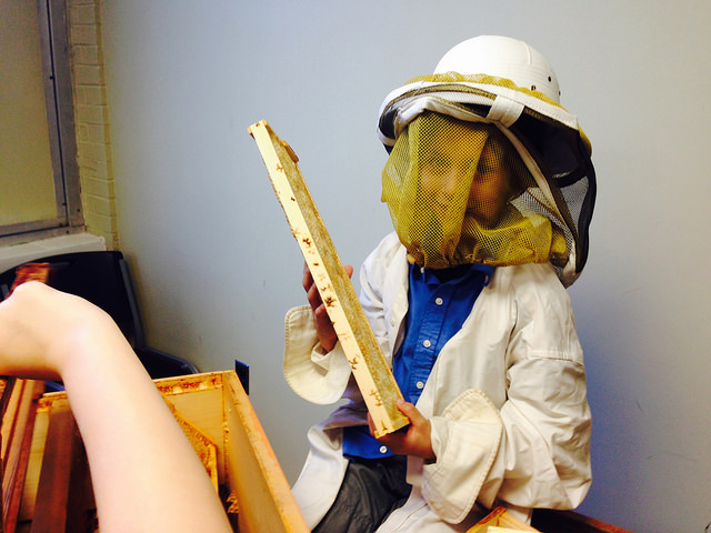 Jeff Sherrod, beekeeper for Hopewell Apiary and teacher at the Academy, brought tools of his trade into the classroom for Exploratory Hour. Students were excited to get to touch and explore without the potential risk of getting too close. He taught them about the social dynamic of the hive, and showed them video footage as well.